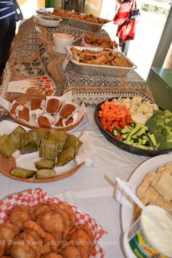 A delicious banquet, featuring Indonesian, Filipino, Indian, and other cuisines!